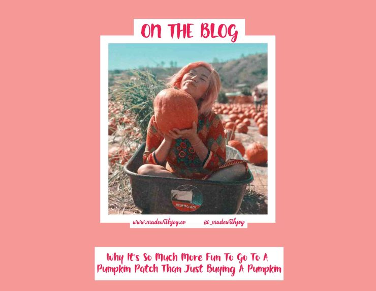 Why It's So Much More Fun To Go To A Pumpkin Patch Than Just Buy
