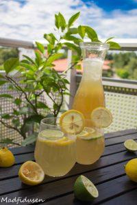 Lemonade03