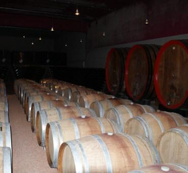 Besøg på vingårde