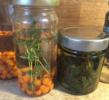 Hjemmelavet kryddersnaps med havtorn og porse