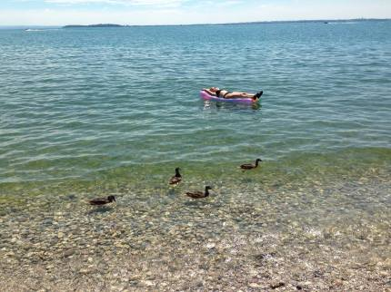 Gardasøen 20141