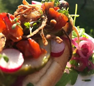 Nemme og lækre gourmet hotdogs