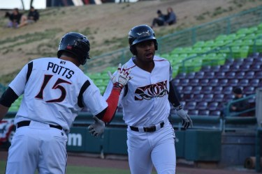Padres prospects Buddy Reed and Hudson Potts celebrate a home run
