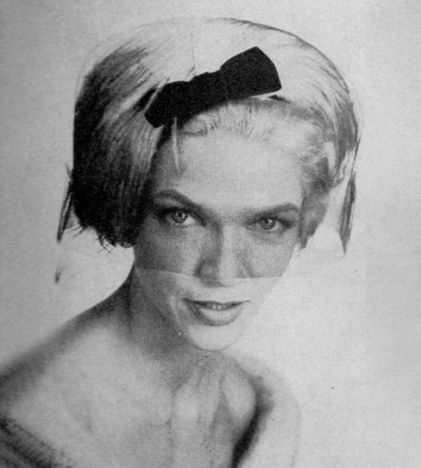 1950s whimsy or veil hat