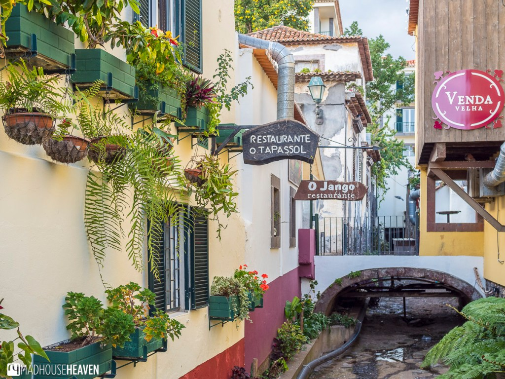 things to see, do and eat in funchal