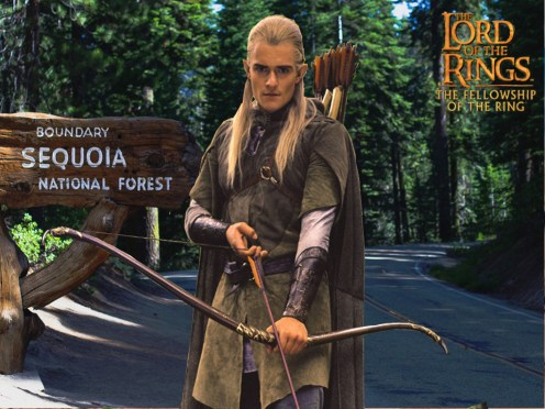 Legolas at Sequoia National Forest