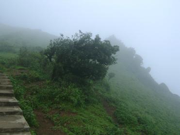 Mullayangiri- misty trail