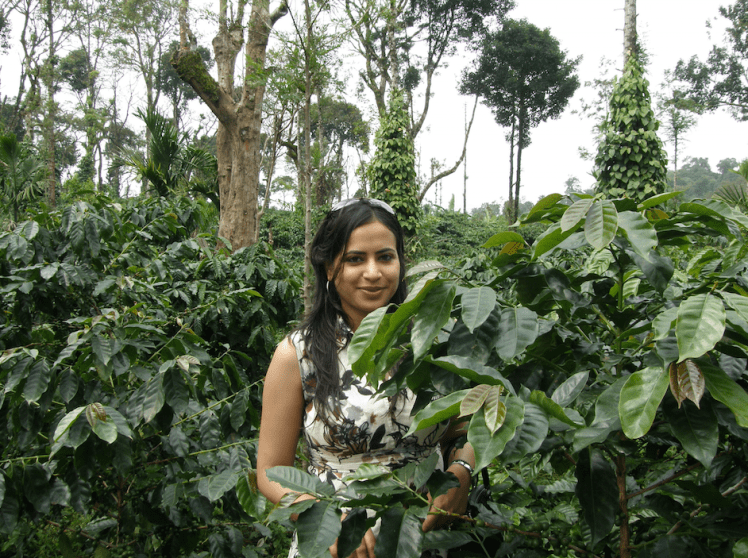 Coffee plantation in Coorg.png