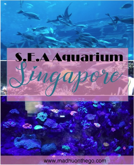 SEA AQUARIUM SINGAPORE.jpg