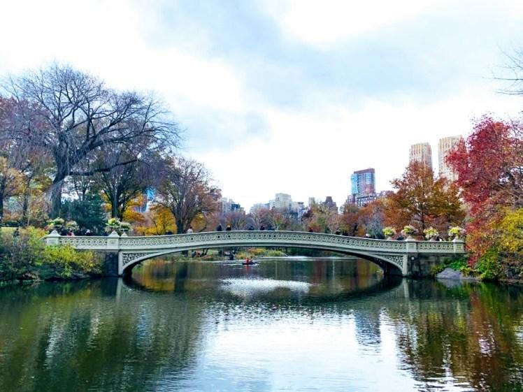 Cover Page, Central park bridge.jpg