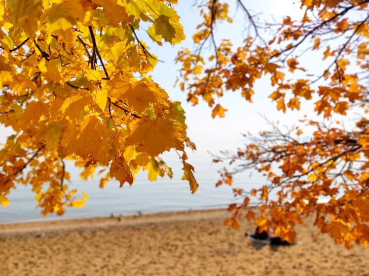 Kings beach lake tahoe USA