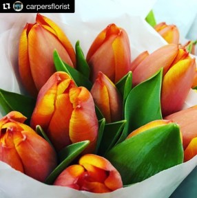 AboutMe.Tulips