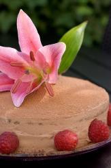 Fødselsdag uden sukker, korn og mælk