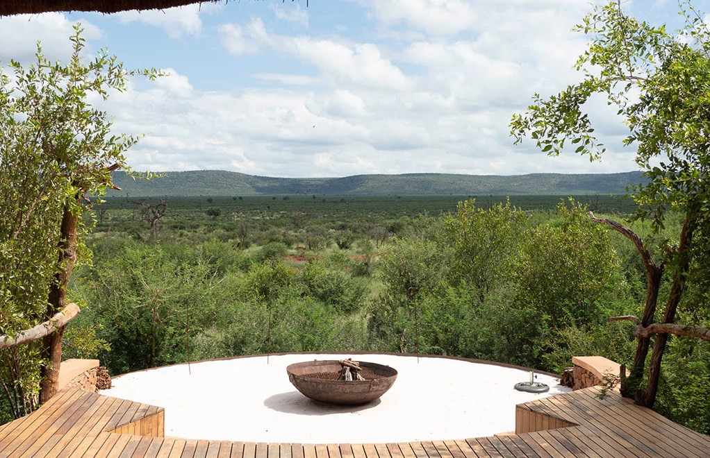 What Makes The Madikwe Safari Experience So Unique?