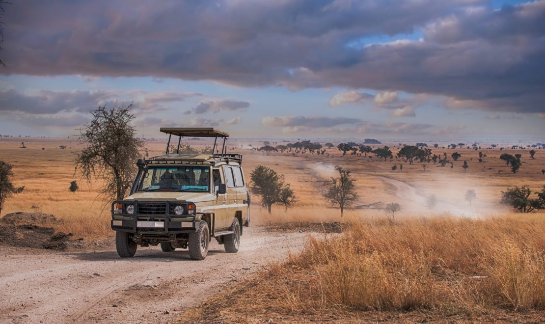 Experience Madikwe Game Reserve Like Never Before