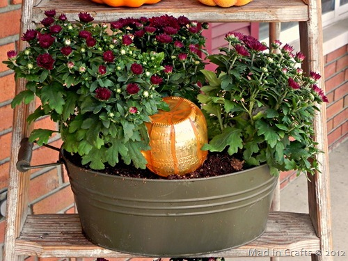 decorative pumpkin automatic mum watering system_thumb