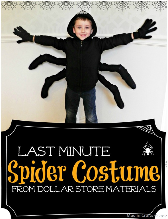 child wearing a diy spider costume
