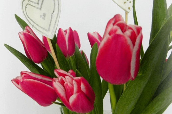 Customize a Store-Bought Bouquet for Valentine's Day