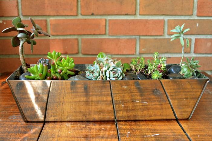 Drywall pan planter