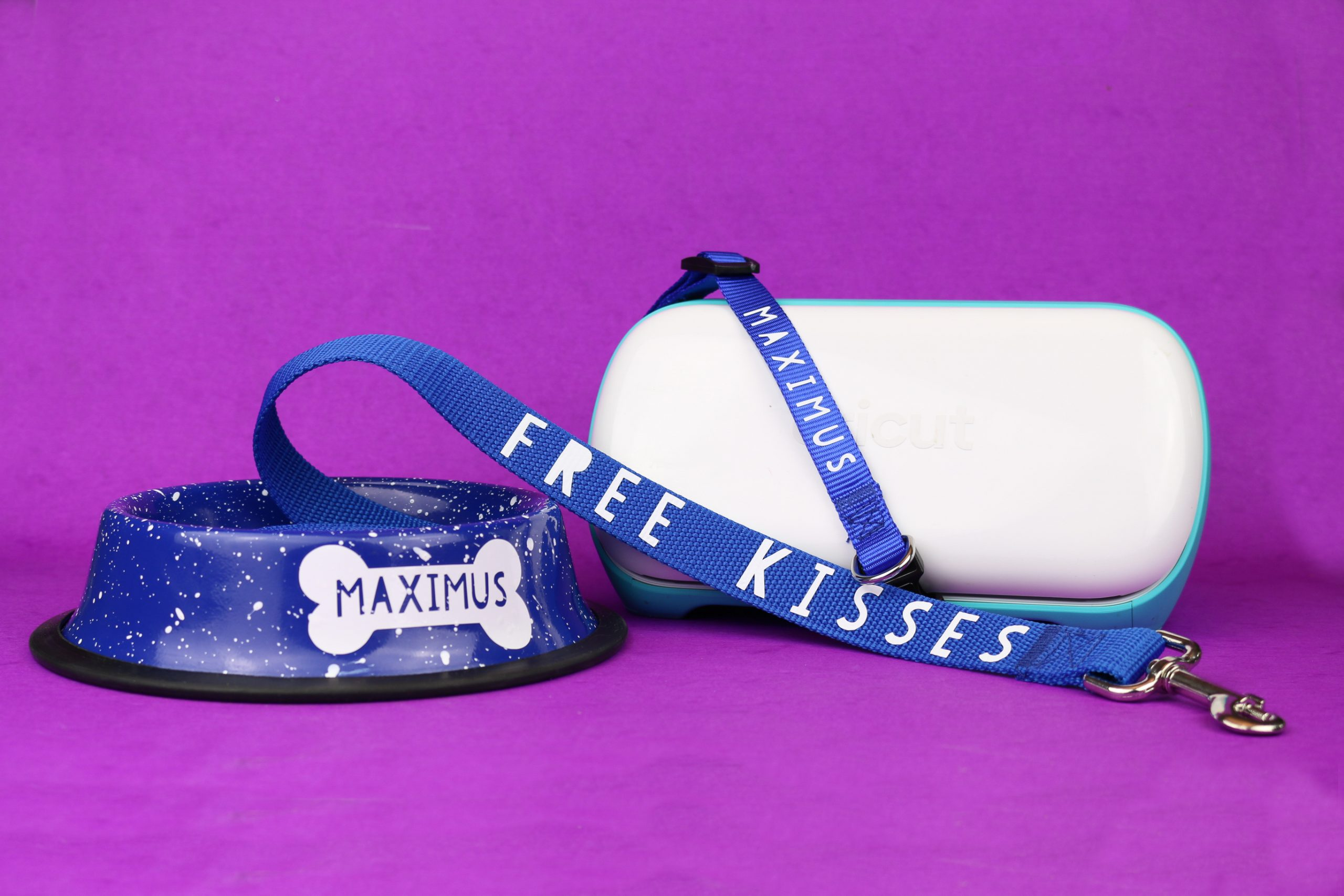 Personalized dog bowl, collar, and leash with Cricut Joy