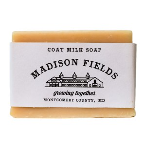 Sage & Lime Goat Milk Soap by Madison Fields