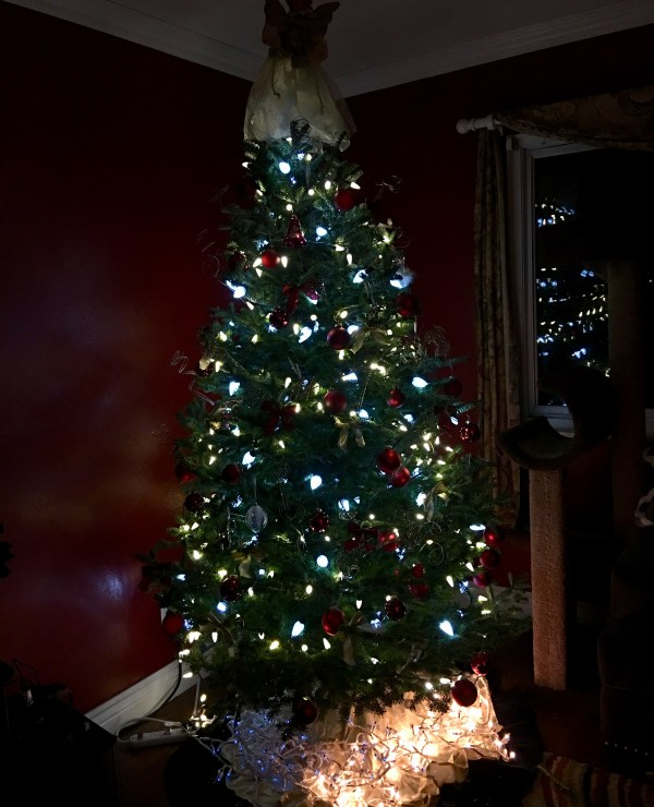 Christmas tree- lit