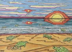 Turtle Beach – Tom Dinchuk