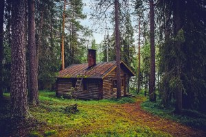 cottage - savings into the stratosphere