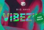 Big Havi Ft. Lil Keed – Vibez'N