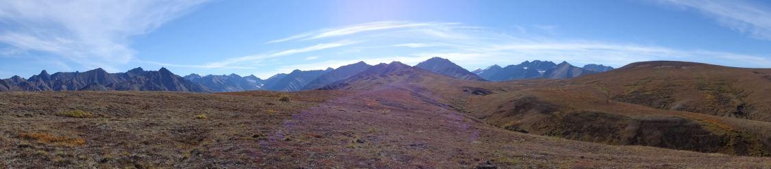 "im ""Denali National Park"" (Alaska, USA)"
