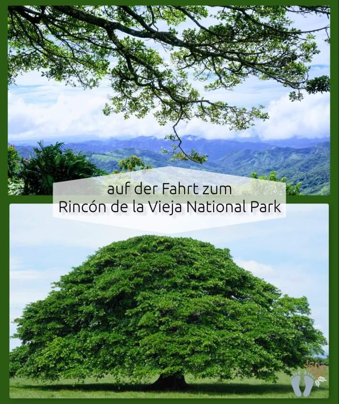 Costa Rica: Tag 04 und 05: Rincón de la Vieja National Park 2