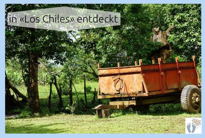 Costa Rica: Tag 06 und 07: Vulkan Arenal und Bootstour den Río Frío entlang 6