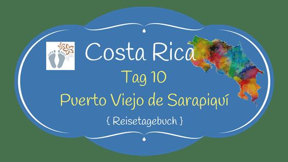 Costa Rica: Tag 10: Puerto Viejo de Sarapiquí: Besuch einer organischen Ananas-Plantage 1