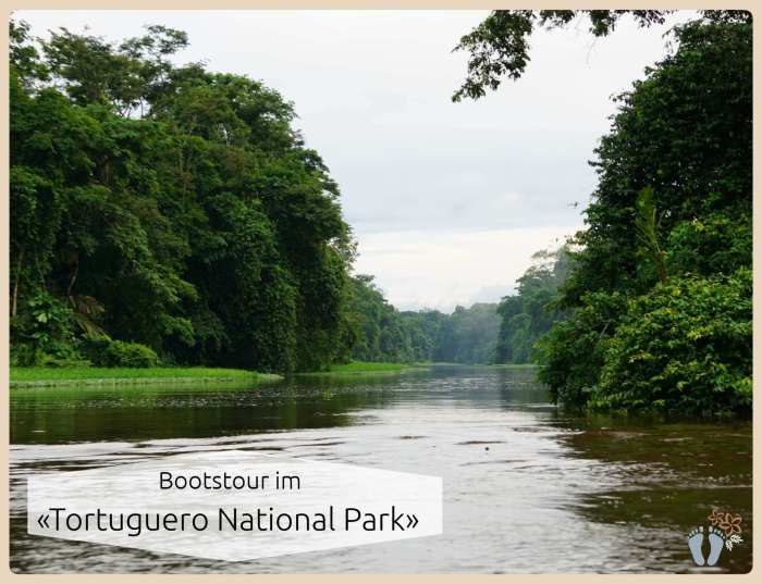 Bootstour durch die Dschungelkanäle des «Tortuguero National Park» {Costa Rica}