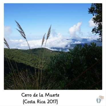 am «Cerro de la Muerte» {Costa Rica 2017}
