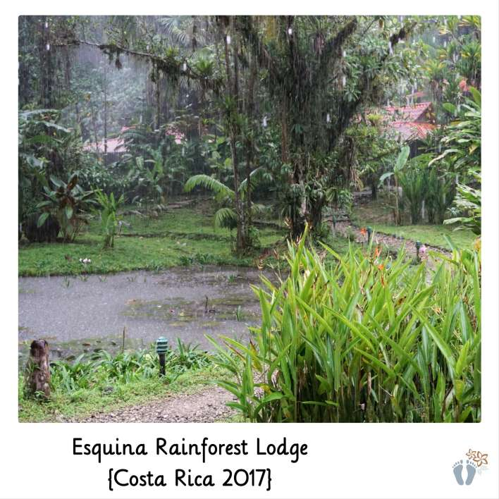 in der «Esquina Rainforest Lodge» {Costa Rica 2017}