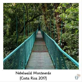 Hängebrücken-Tour im «Nebelwald Monteverde» {Costa Rica 2017}
