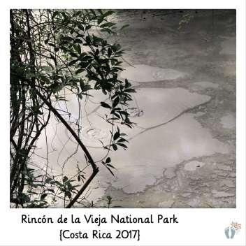 blubbernde Schlammlöcher im «Rincón de la Vieja National Park» {Costa Rica 2017}