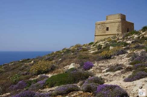 «Dwerja-Tower» bei «San Lawrenz» auf «Gozo»