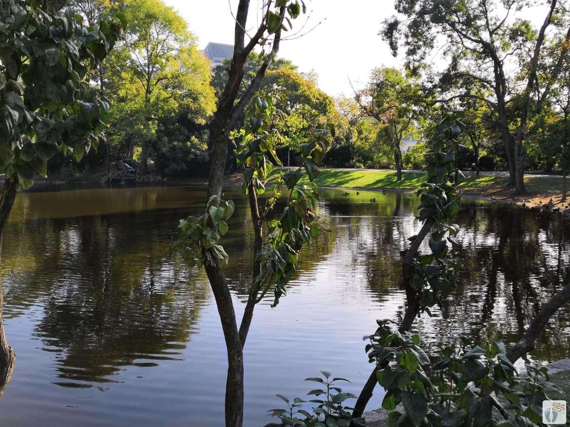 """Wiener Fotomarathon 2018 - Thema """"im Stadtpark"""""""