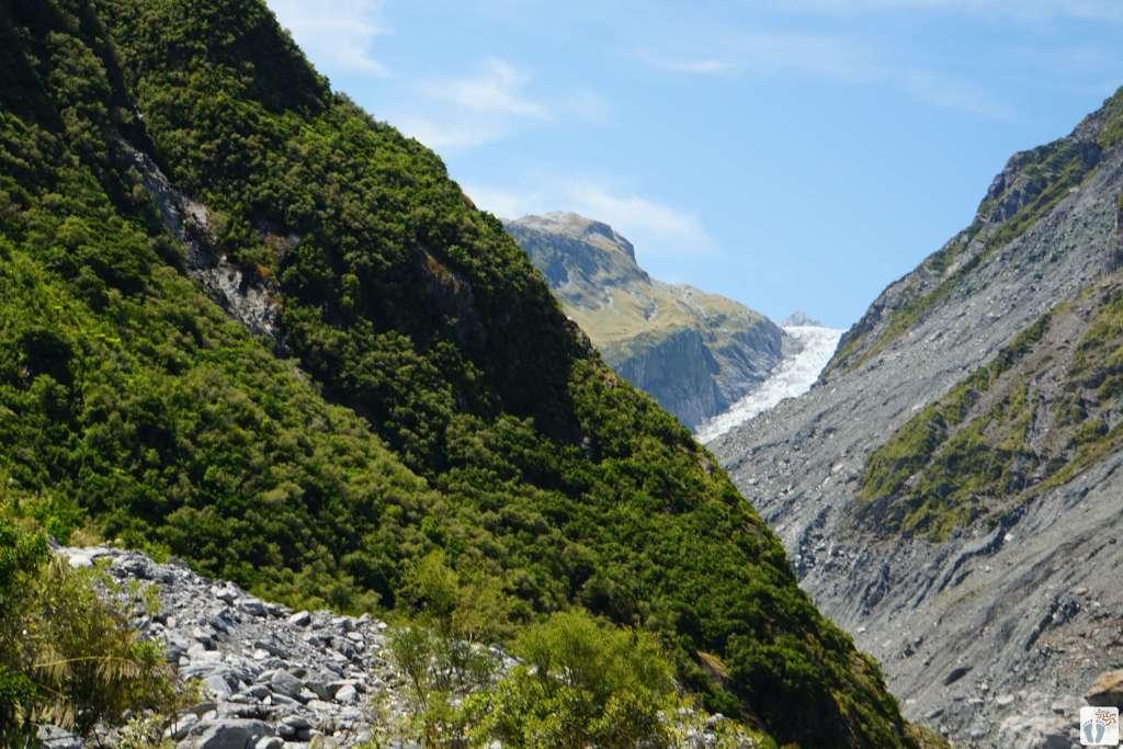 Blick auf den «Fox Glacier» {Reisetagebuch «Roadtrip durch Neuseeland mit dem Bus»}