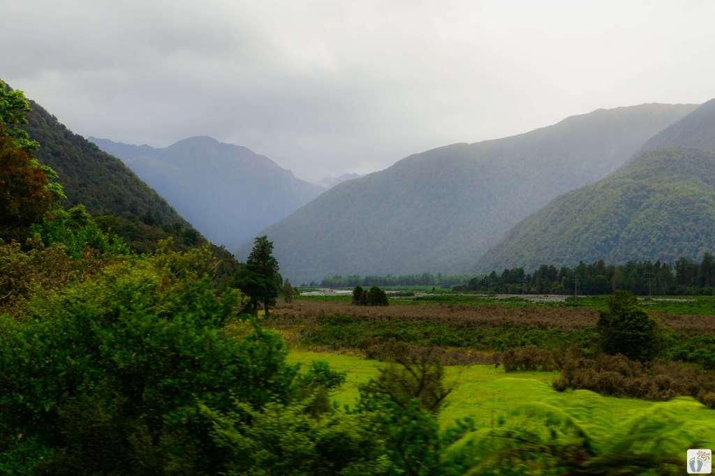 Landschaft bei der Fahrt mit dem TranzAlpine Zug {Reisetagebuch «Roadtrip durch Neuseeland mit dem Bus»}