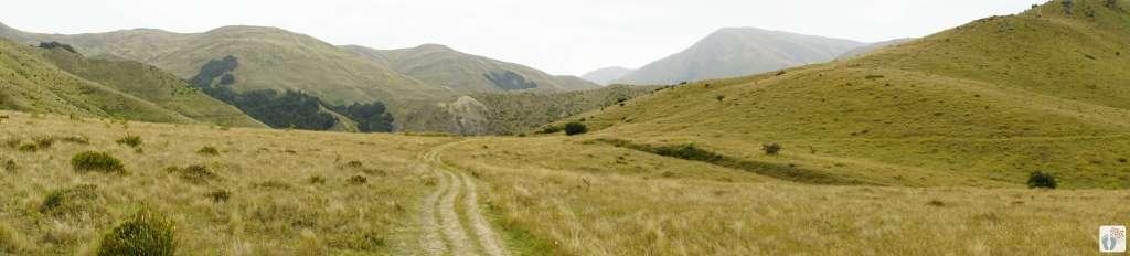 Überblick bei «Eichardts Flat» - Wanderung «Sawpit Gully Trail» {Reisetagebuch «Roadtrip durch Neuseeland mit dem Bus»: «Arrowtown»}