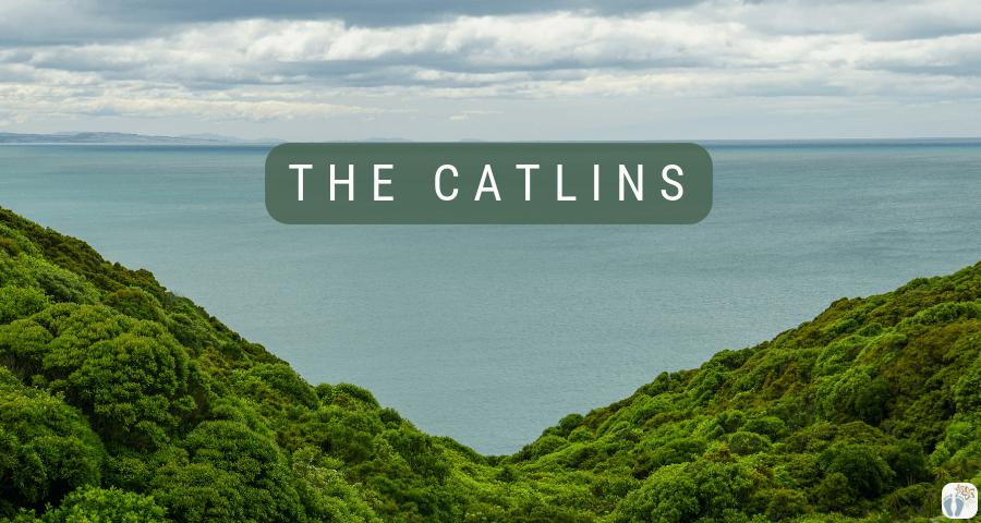 «the Catlins» entlang {Reisetagebuch «Roadtrip durch Neuseeland mit dem Bus»}