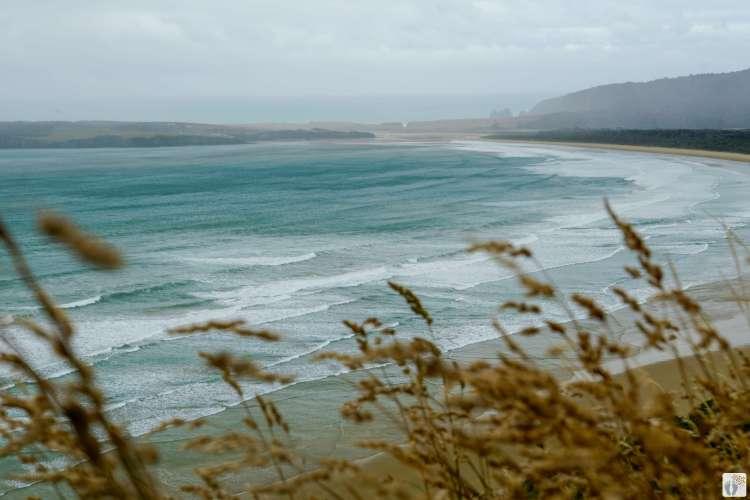 Ausblick vom «Florence Hill Lookout» {Reisetagebuch «Roadtrip durch Neuseeland mit dem Bus»: «Catlins Coast»}