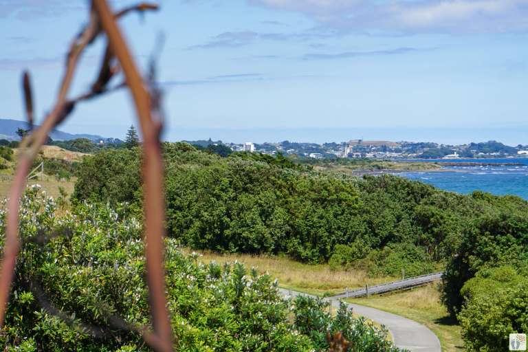 Coastal Walkway: Blick auf New Plymouth {Reisetagebuch «Roadtrip durch Neuseeland mit dem Bus»}
