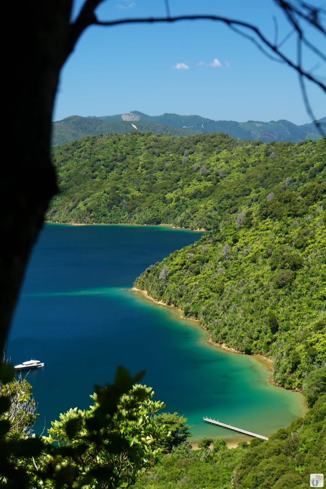 «Marlborough Sounds» {Reisetagebuch «Roadtrip durch Neuseeland mit dem Bus»}