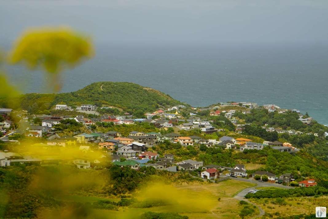 Stadtwanderung «City to Sea Walkway»: Ausblick auf «Island Bay» {Reisetagebuch «Roadtrip durch Neuseeland mit dem Bus»: «Wellington»}