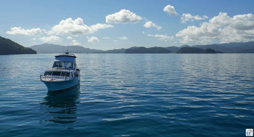 Aussicht auf Bay of Islands {Roadtrip durch Neuseeland mit dem Bus: Paihia}
