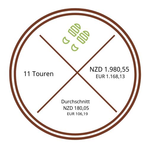 Darstellung Kosten Aktivitäten {46 Tage Roadtrip durch Neuseeland mit dem Bus}